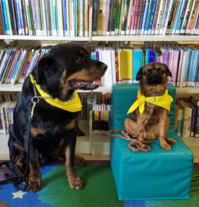 Image of two dogs from the library read-to-a-dog program