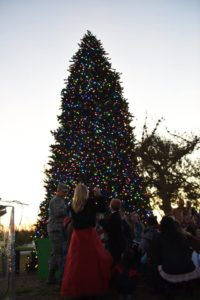 Image of a tree lighting ceremony